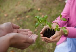 Child Development Strategies: Ways to Cultivate Emotional Growth